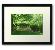 green,clean and tranquil Framed Print