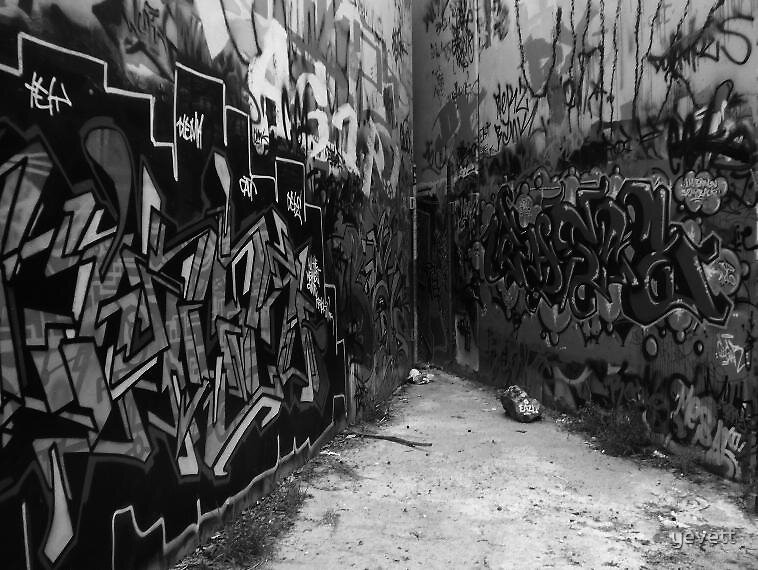 Grafitti ally in mono. by yevett