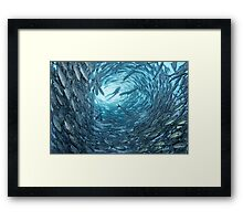 Surrounded Framed Print