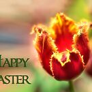 Happy Easter Tulip by Kathy Weaver