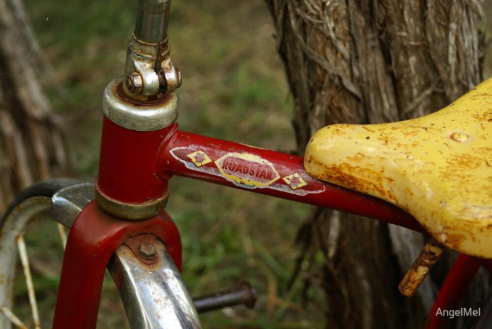 Roadstar bike by AngelMel