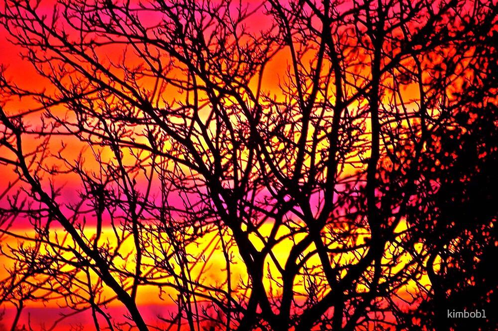 sunrise from my window 2 by kimbob1
