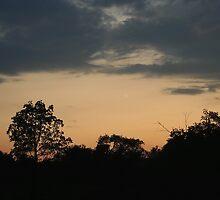 Seneca Sunrise by Cheri Perry