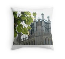 Ely Cathedral 3 Throw Pillow