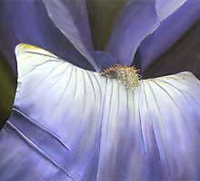 iris by cathy savels