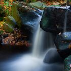 Padley Gorge by Tom Black