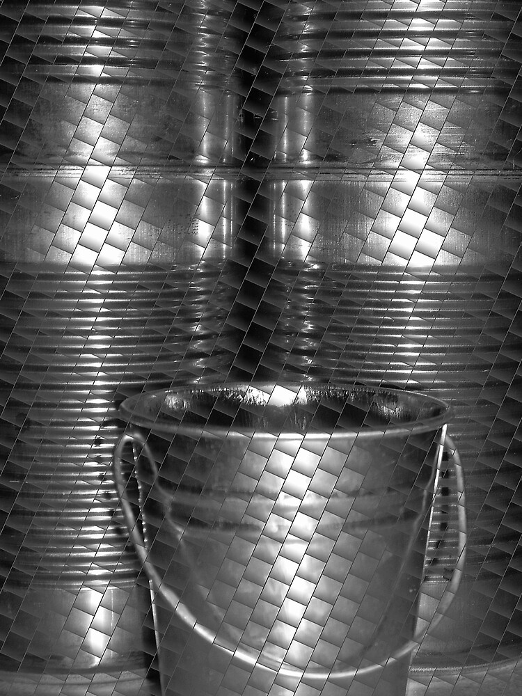The Cans by Bridget Banik