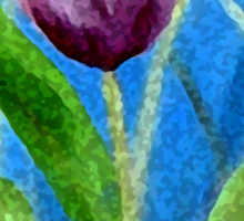 Sponge Tulip Magenta Sticker