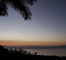 Early Morning  by Kay  G Larsen