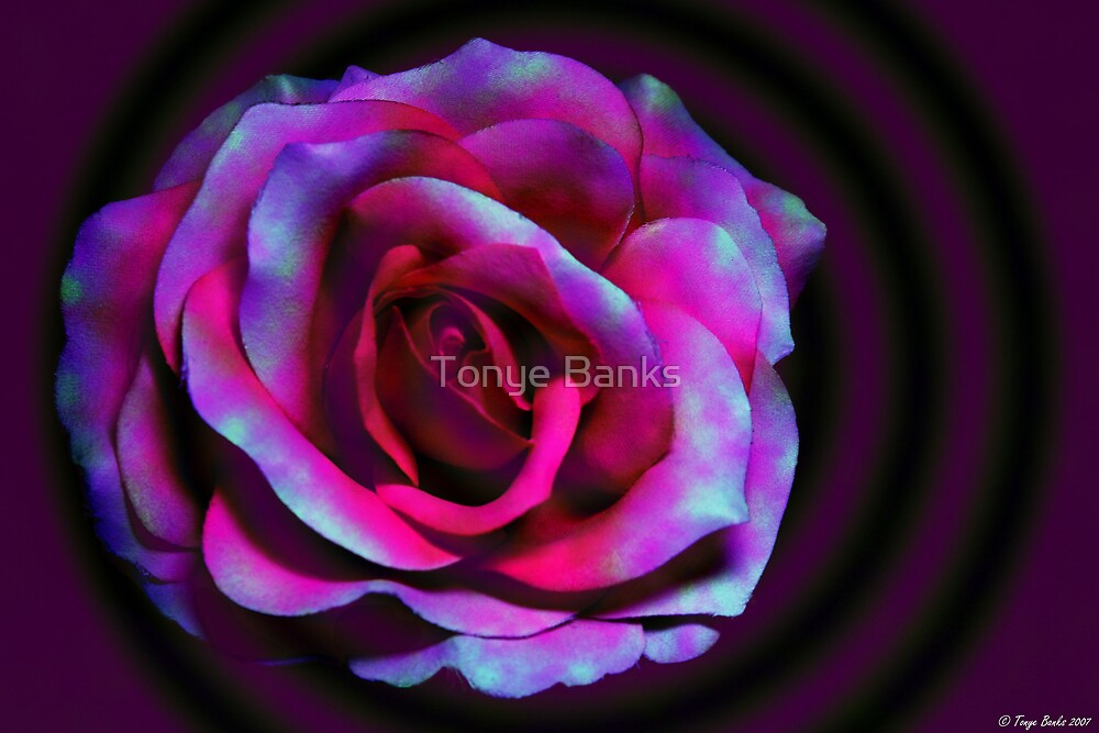 Ring Around The Rosy by Tonye Banks