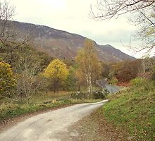 Borrowdale Roads by Adam Jones