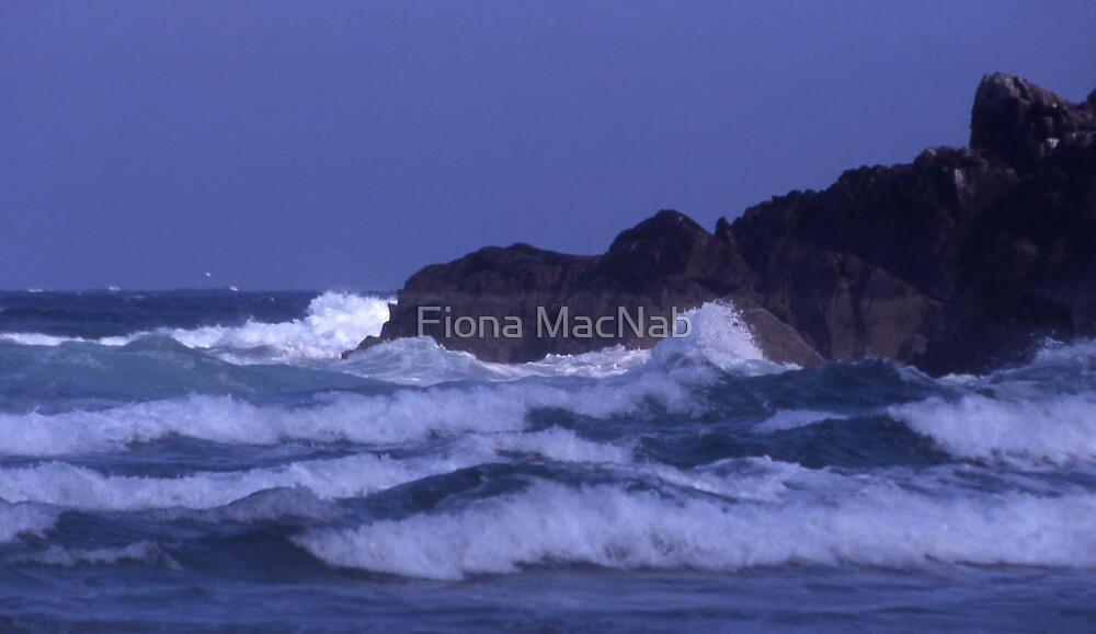 Waves by Fiona MacNab