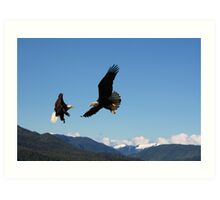eagles in the sky Art Print