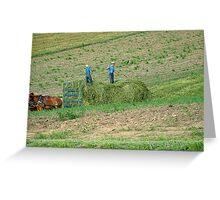amish hay day Greeting Card