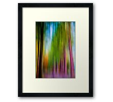 Sequoia Drive Framed Print