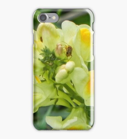Yellow Flower with insect iPhone Case/Skin