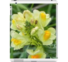 Yellow Flower with insect iPad Case/Skin