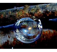 Bubble Ornament Photographic Print