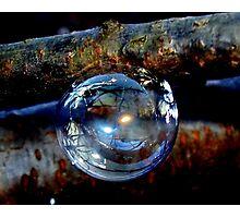 Bubble Ornament Photographic Print