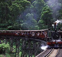 Puffing Billy by Ben Ryan