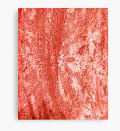 Red Colored Paper 2 Canvas Print