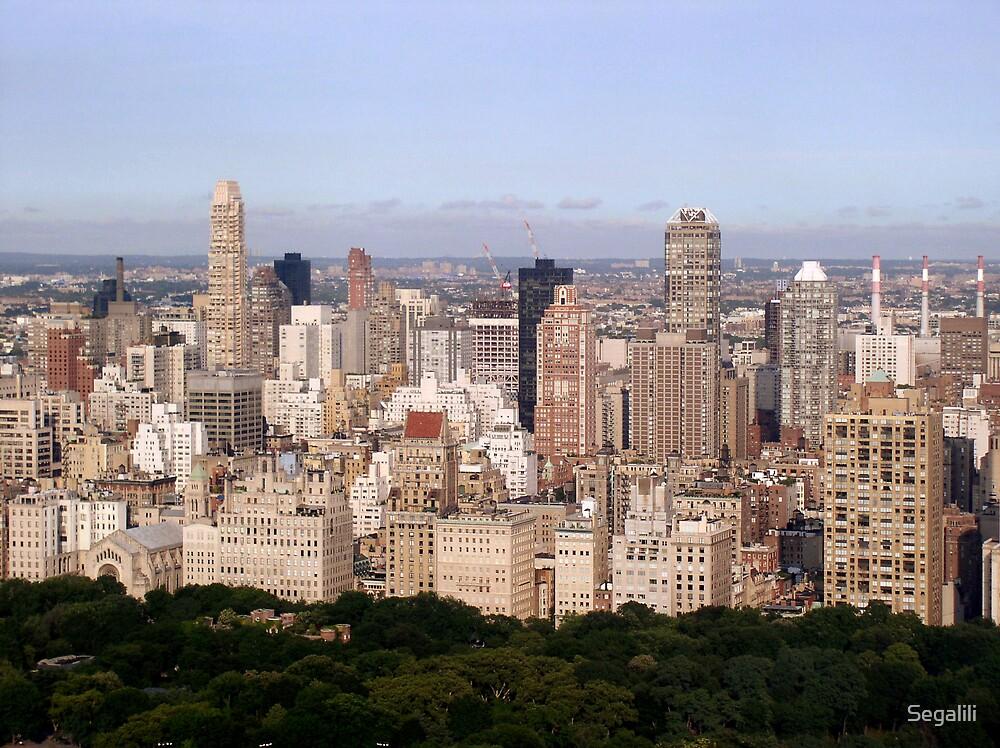 New-York, New-York by Segalili
