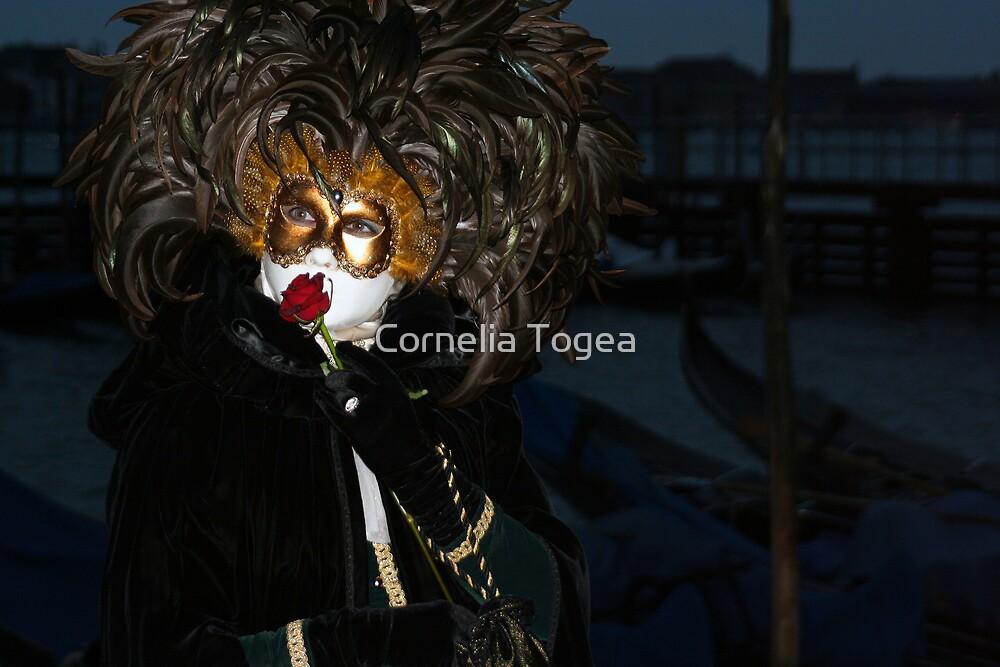 night romance by Cornelia Togea