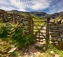 Gate To The Coniston Old Man by Gary Kenyon