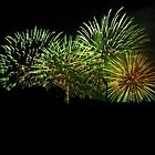 Green Fireworks by DPalmer