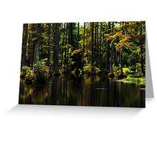 Swamp lights and shadows Greeting Card