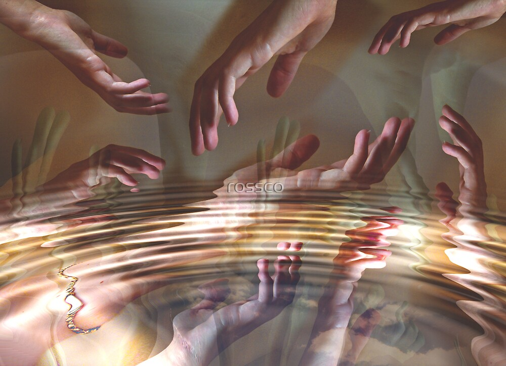 The Show Of Hands by rossco