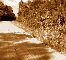 Old Dirtroad by garain