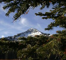 Silver Lake Mountain by photoson