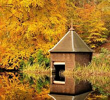 Autumn Reflections, Faskally, Perthshire by Karen Thorburn