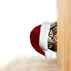 Christmas Peeps by Ladymoose
