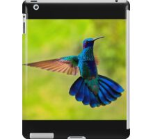 Hummingbird Splendour iPad Case/Skin