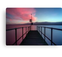 Pink or blue? Canvas Print