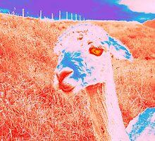 Alpaca by MichelleS