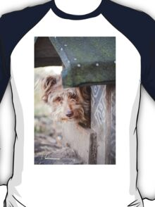 bad dog head jut out of kennel  T-Shirt