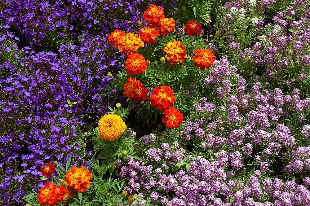 Tuscan Flowers by Gino Iori