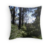 peeking through the bush towards Erriba, Tasmania - (climbing Mt Roland) Throw Pillow