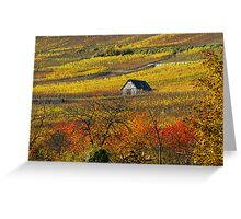 The house of vineyards Greeting Card