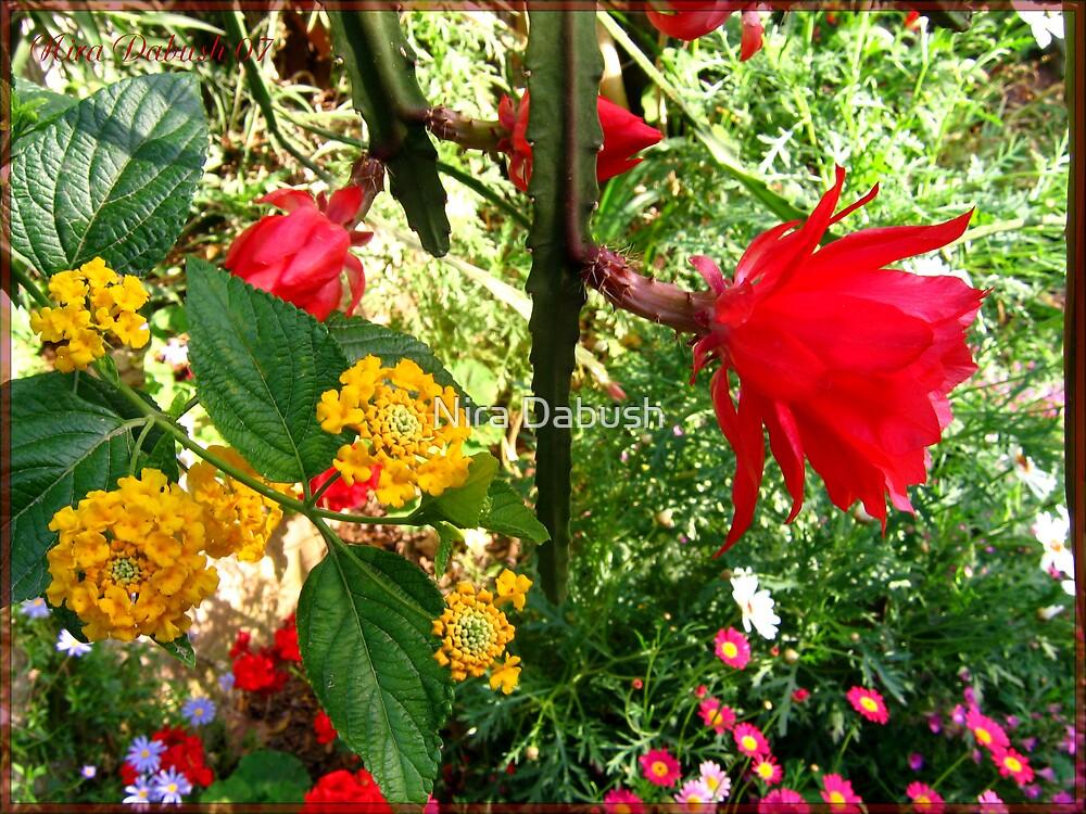 A Delightful Magical Garden by Nira Dabush