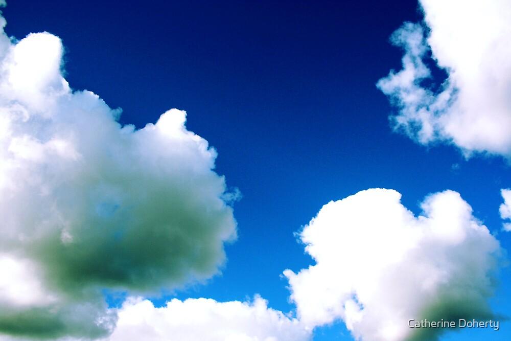 Big Sky.  by Catherine Doherty