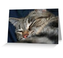 Sleeping Greeting Card