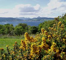 Lamlash from King's Cross by Fiona MacNab