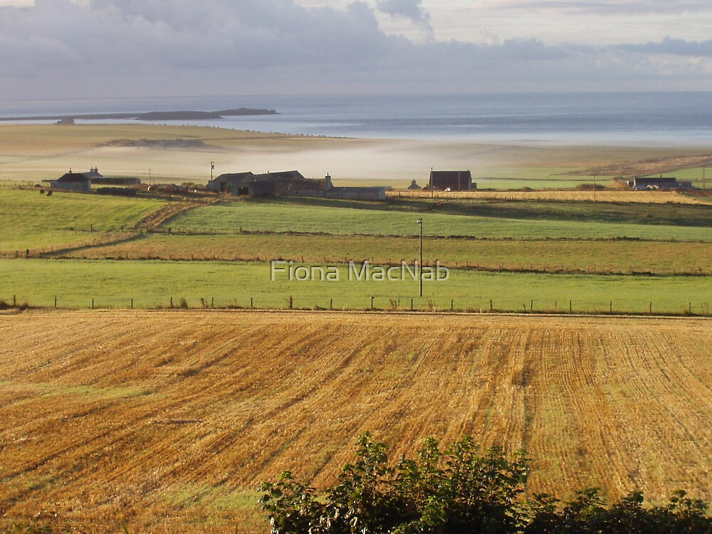 Autumn in Orkney by Fiona MacNab