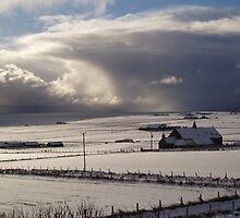 Winter in Orkney by Fiona MacNab