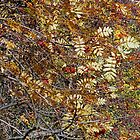 Autumn Tapestry by Harry Oldmeadow