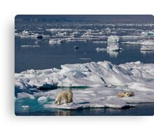 Ice Retreat Canvas Print